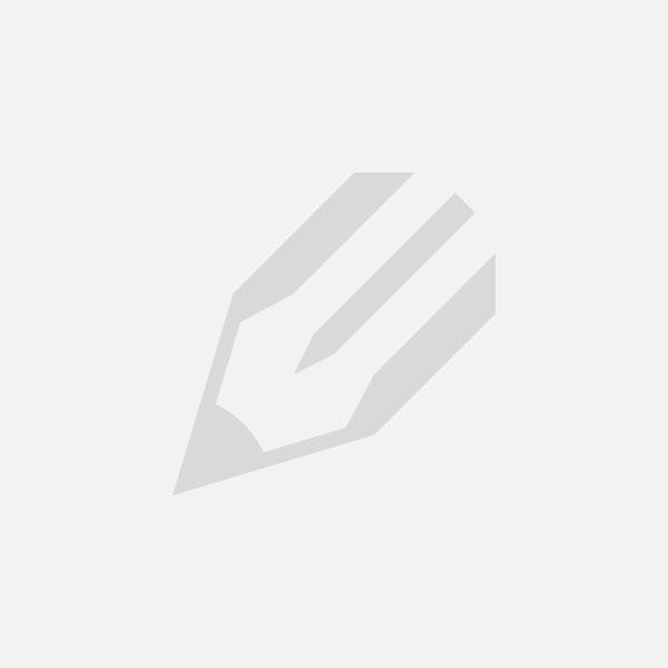 Chromes ubændige informationsindsamling